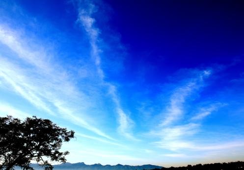 tashijong morning