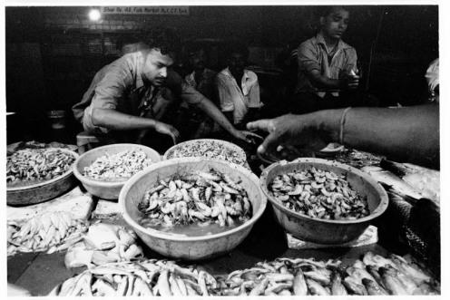 Hoogly fish in Delhi